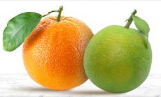 Bigbasket Offer: Upto 30% OFF Fresh Fruits Online